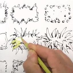 Stauden im Grundriss- Ulmer Verlag - Youtube Link